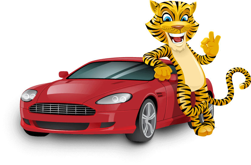 Protect yourself with Insurance Tiger car